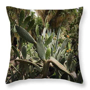 Botanic Garden Valencia Throw Pillow