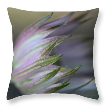 Botanica ... Flight Throw Pillow by Connie Handscomb