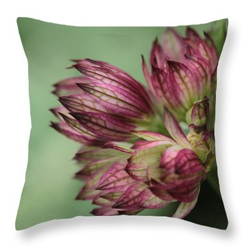 Botanica .. New Beginnings  Throw Pillow