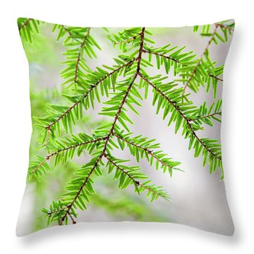 Botanical Abstract Throw Pillow by Christina Rollo