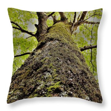 Botanical Behemoth Throw Pillow