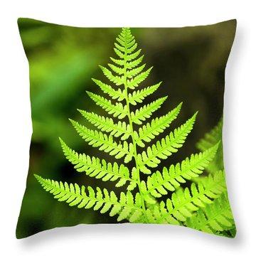 Botanical Fern Throw Pillow