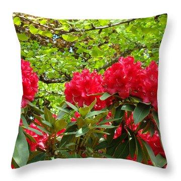 Botanical Garden Art Prints Red Rhodies Trees Baslee Troutman Throw Pillow by Baslee Troutman