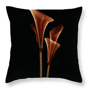 Botanical Study 5 Throw Pillow by Brian Drake - Printscapes