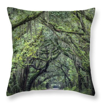 Botany Bay Country Road Throw Pillow by Dustin K Ryan