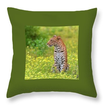 Botswana Leopard  Throw Pillow by Happy Home Artistry