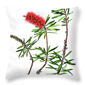 Bottle Brush Throw Pillow by Heidi Kriel
