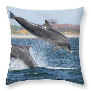 Throw Pillow featuring the photograph Bottlenose Dolphin - Moray Firth Scotland #48 by Karen Van Der Zijden