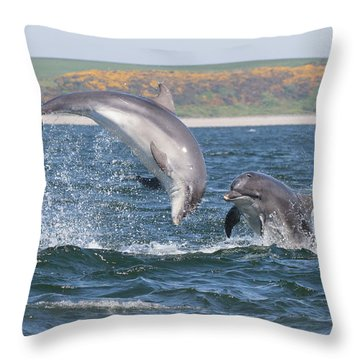 Throw Pillow featuring the photograph Bottlenose Dolphin - Moray Firth Scotland #49 by Karen Van Der Zijden