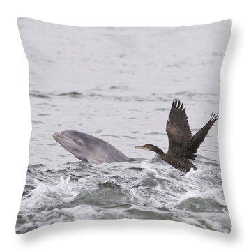 Baby Bottlenose Dolphin - Scotland #10 Throw Pillow