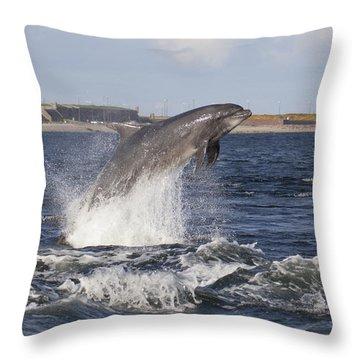 Bottlenose Dolphin - Scotland  #26 Throw Pillow