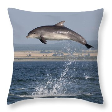 High Jump - Bottlenose Dolphin  - Scotland #42 Throw Pillow
