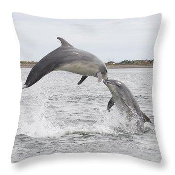 Bottlenose Dolphins - Scotland #1 Throw Pillow