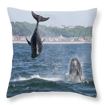 Throw Pillow featuring the photograph Bottlenose Dolphins - Moray Firth Scotland #46 by Karen Van Der Zijden