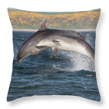 Throw Pillow featuring the photograph Bottlenose Dolphins - Moray Firth Scotland #47 by Karen Van Der Zijden