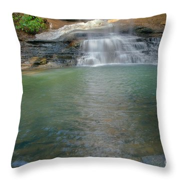 Bottom Of Falls Throw Pillow