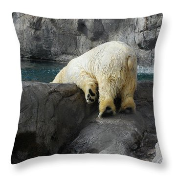 Bottoms Up Throw Pillow by Carolyn Dalessandro