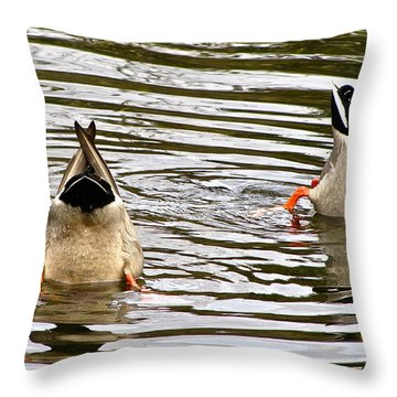 Throw Pillow featuring the photograph Bottoms Up by Sean Griffin