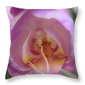Boudoir Orchid Throw Pillow