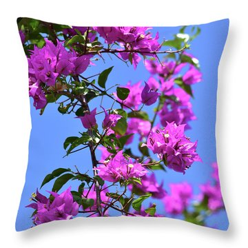 Bougainvillea And Sky Throw Pillow