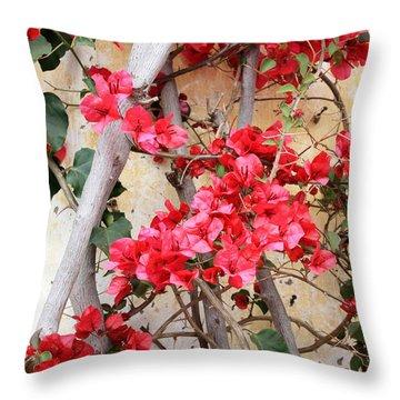 Bougainvillea Throw Pillow by Carol Groenen