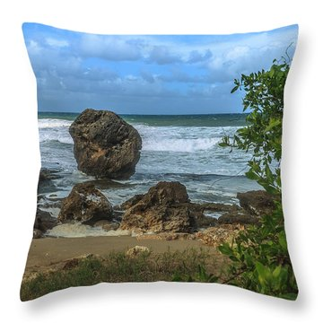 Boulder Beach Throw Pillow