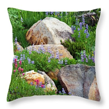 Boulder Blooms Throw Pillow