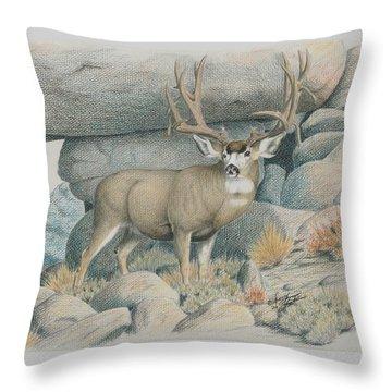 Boulder Buck  Throw Pillow