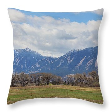 Throw Pillow featuring the photograph Boulder Colorado Prairie Dog View  by James BO Insogna