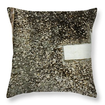 Throw Pillow featuring the photograph Boulder Face With Arrow And Vines by Jason Rosette