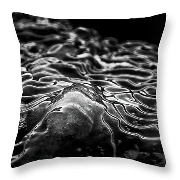 Boulder Point Bw Throw Pillow