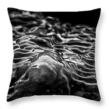 Boulder Point Bw Throw Pillow