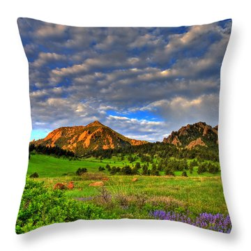 Boulder Spring Wildflowers Throw Pillow