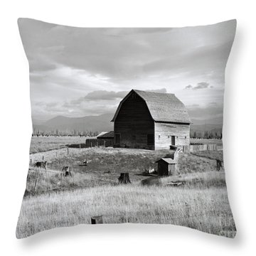 Boundary City Throw Pillow by Photo Researchers