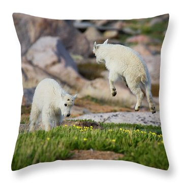 Bounder Throw Pillow by Jim Garrison