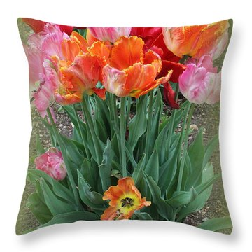 Bouquet Of Colorful Tulips Throw Pillow