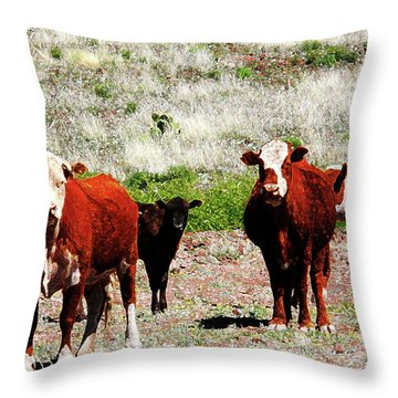 Bovine Throw Pillow