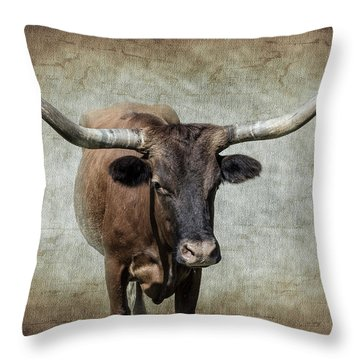 Bovine Throw Pillow by Doug Long