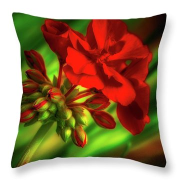 Bow Toward The Light Throw Pillow
