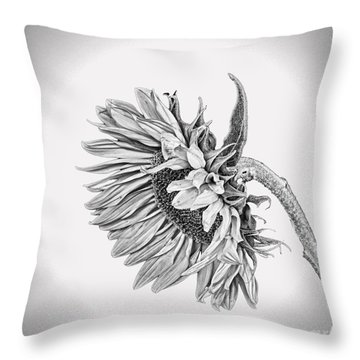 Bowed Sunflower Bw Throw Pillow