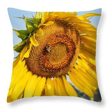 Bowed Sunflower Throw Pillow