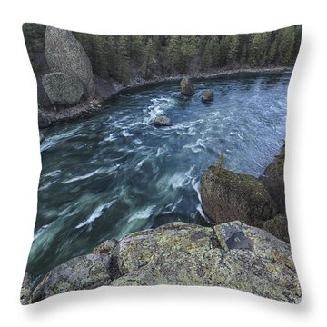 Bowl And Pitcher Throw Pillow