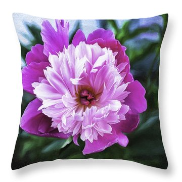 Throw Pillow featuring the photograph Bowl Of Beauty by Bitter Buffalo Photography