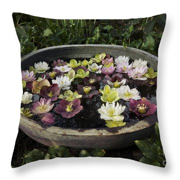 Bowl Of Hellebores Throw Pillow