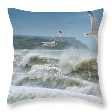 Bowleaze Cove Throw Pillow