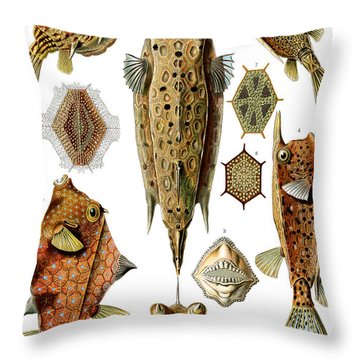 Box Fishes Throw Pillow
