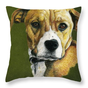 Boxer Boy Throw Pillow by Claire Muller