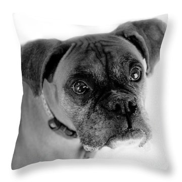 Boxer Dog Throw Pillow by Marilyn Hunt