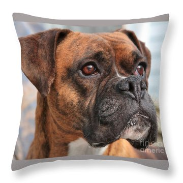 Boxer Portrait Throw Pillow by Debbie Stahre