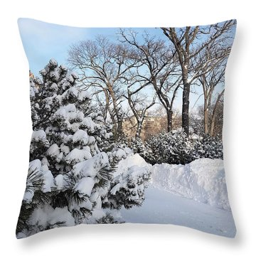 Boxing Day Throw Pillow
